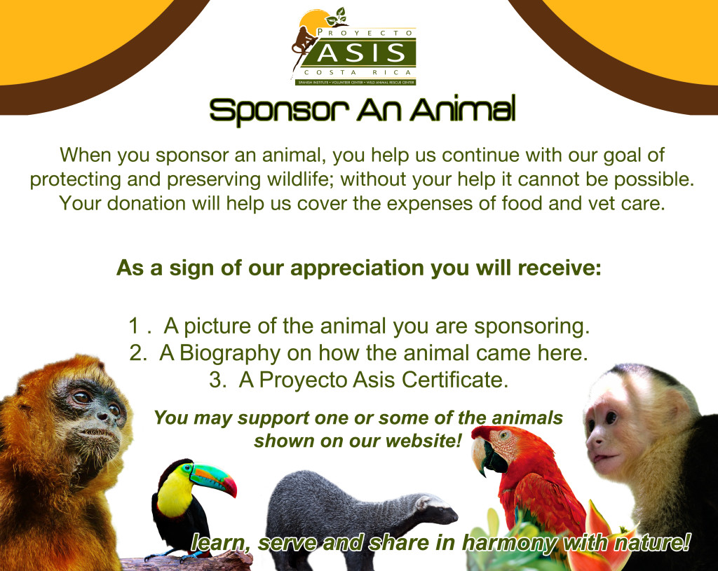 Sponsor an Animal.jpg
